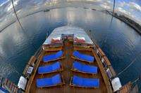 後太陽甲板 | 檸檬鯊潛水